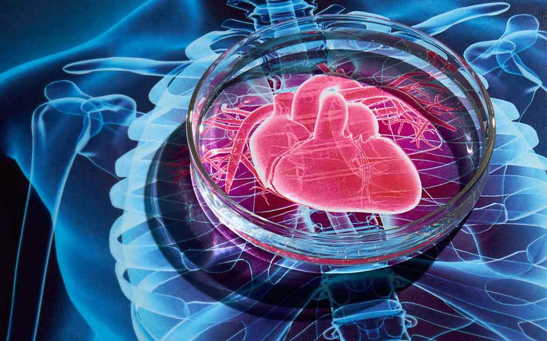 Heart-Disease-new-news-site